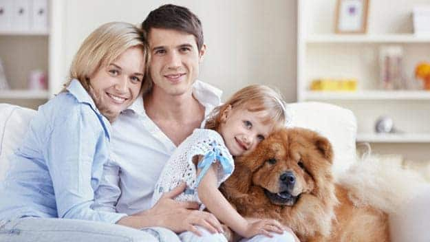 Wills & Trusts dog-young-family Direct Wills Eynsham